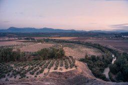 View Cortijo Montano